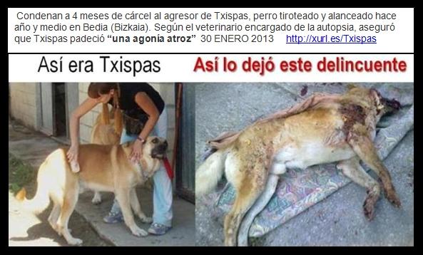 TXISPAS